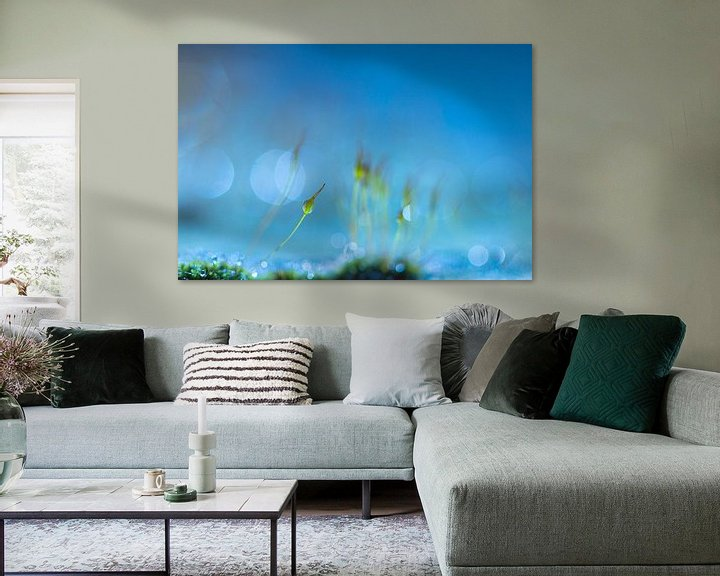 Sfeerimpressie: Blue dream van Teuni's Dreams of Reality