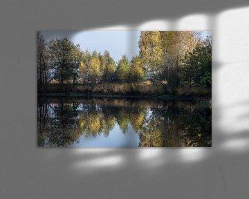 Herfst weerspiegeling