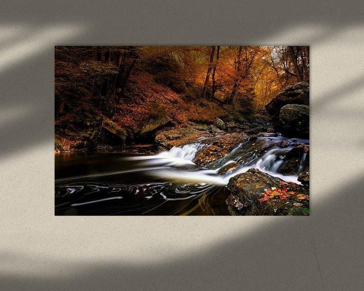 Sfeerimpressie: Herfstpracht van Rudy De Maeyer