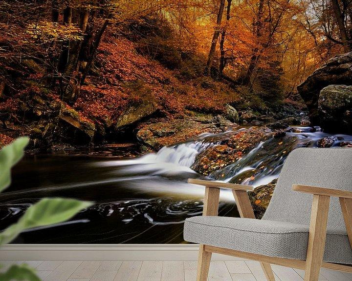 Sfeerimpressie behang: Herfstpracht van Rudy De Maeyer