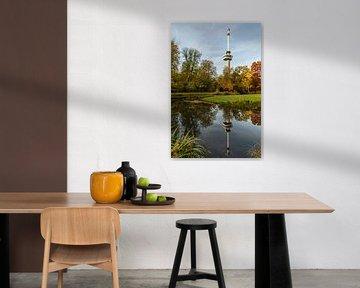 Herfst tinten en Euromast weerspiegeld in het water van Tony Buijse