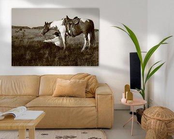cowgirl on the prairie van Patries Photo