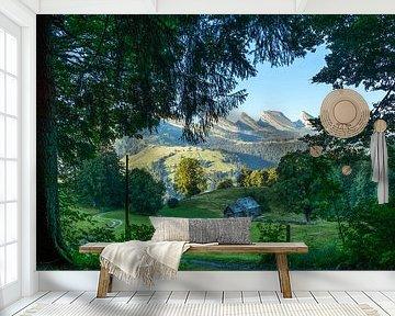 Boerenschuur in Wildhaus (Zwitersland) van Arjan Schalken