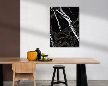 NETWORKED BLACK & WHITE v3 van Pia Schneider