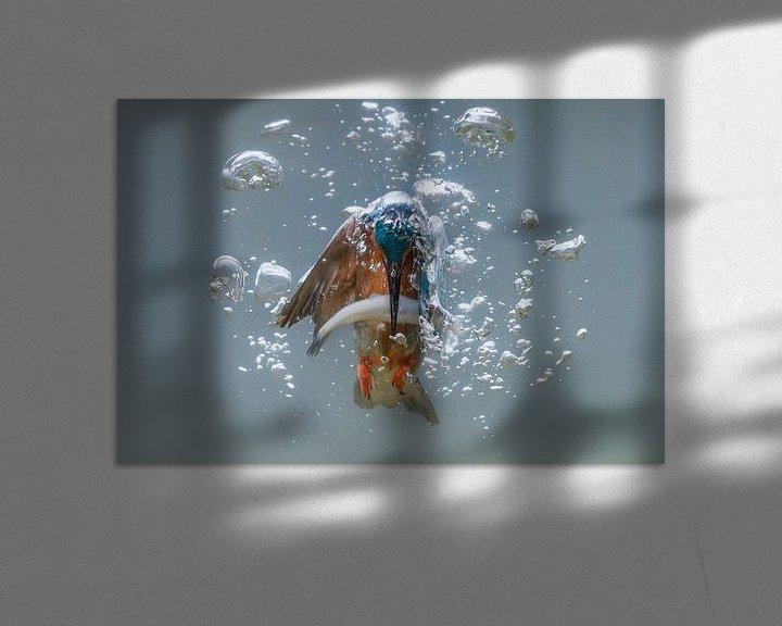 Sfeerimpressie: Vissende ijsvogel van Tariq La Brijn
