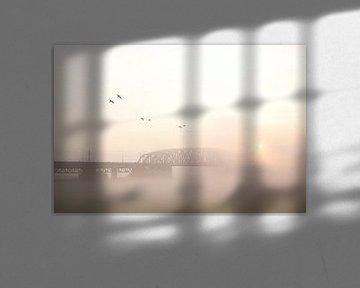westervoort, brug in de mist van joas wilzing