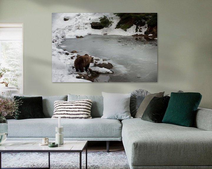 Sfeerimpressie: Bruine beer aan waterkant van Monique Pouwels