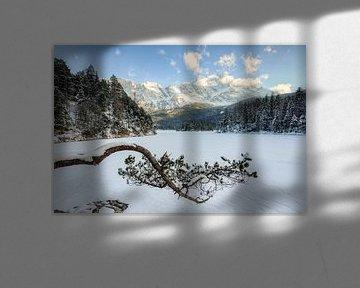 Pijnboom op de Eibsee in de winter van Michael Valjak