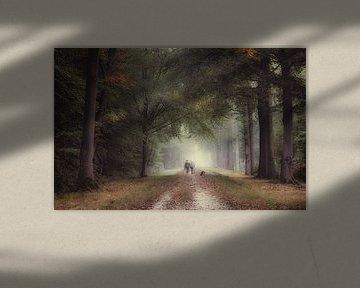 Walking with the dog van Jos Erkamp