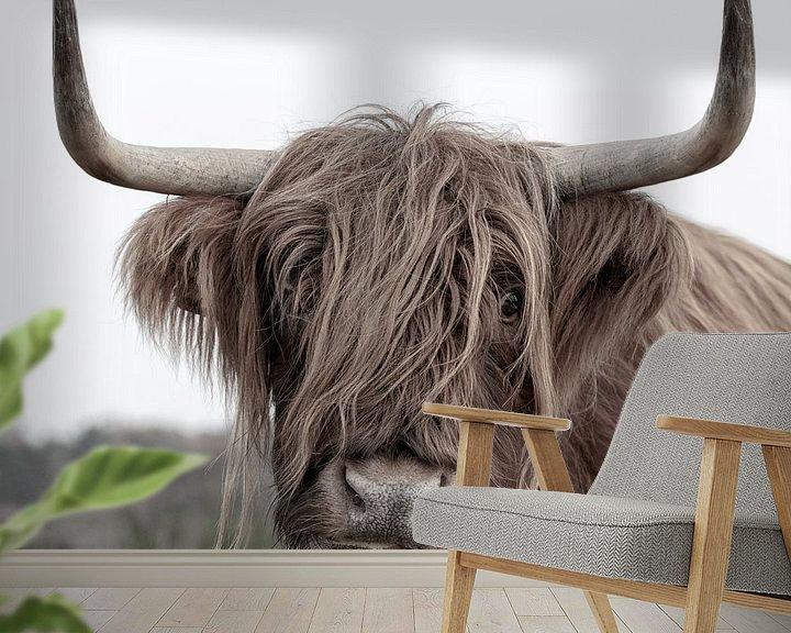 Sfeerimpressie behang: Schotse Hooglander uit het Gooi van Dennisart Fotografie