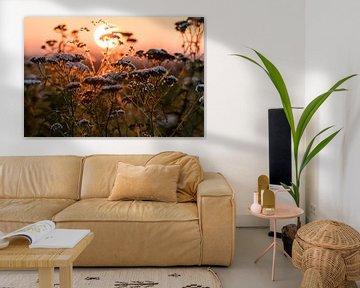 Visible autumn lights van Nildo Scoop