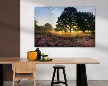 Gouden Gloed van Koen Boelrijk Photography