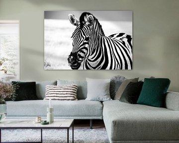 Zebra in Etosha NP von Marit van de Klok