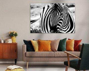 Zebra close-up von Marit van de Klok