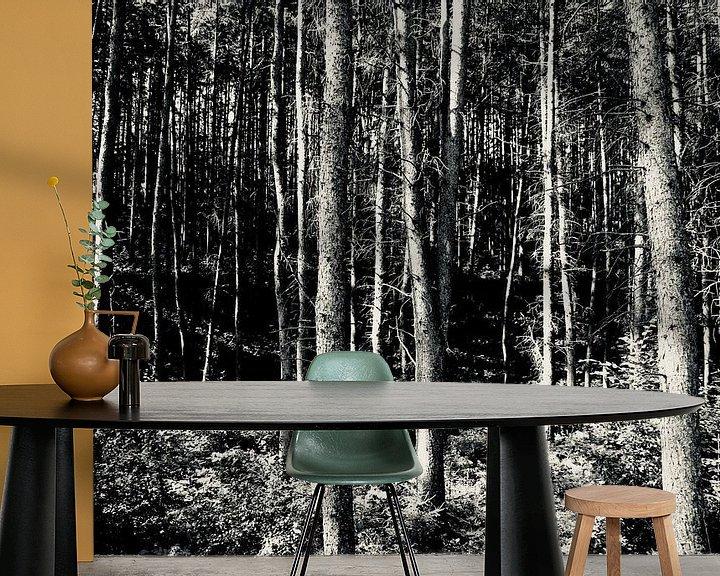 Beispiel fototapete: Zon in het bos von Sven Zoeteman