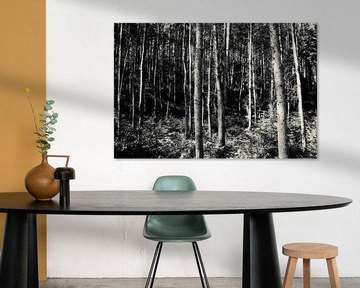 Beispiel: Zon in het bos von Sven Zoeteman