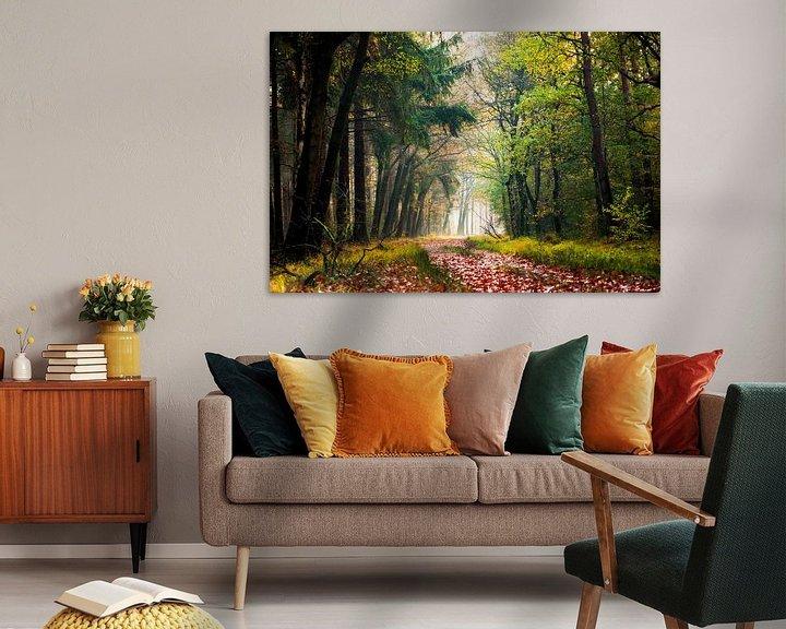 Sfeerimpressie: Herfstkleuren in het bos. van Karel Pops