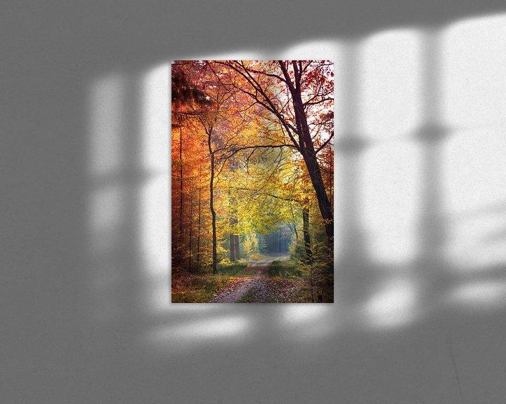 Sfeerimpressie: Herfst kleuren in het bos. van Karel Pops