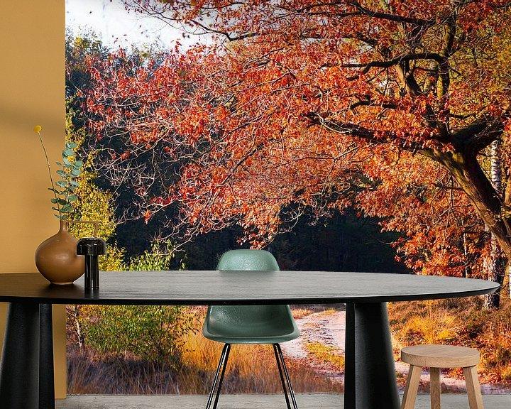 Sfeerimpressie behang: Herfst kleuren in het bos. van Karel Pops