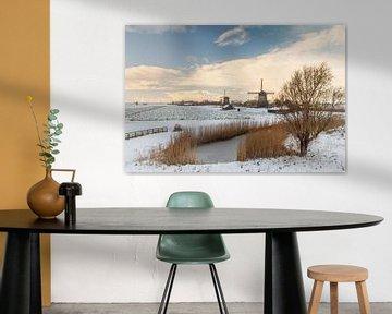 Nederlands winterbeeld van Menno Schaefer