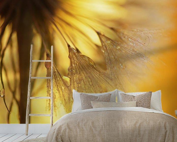 Sfeerimpressie behang: Paardebloemen licht van Tanja Riedel