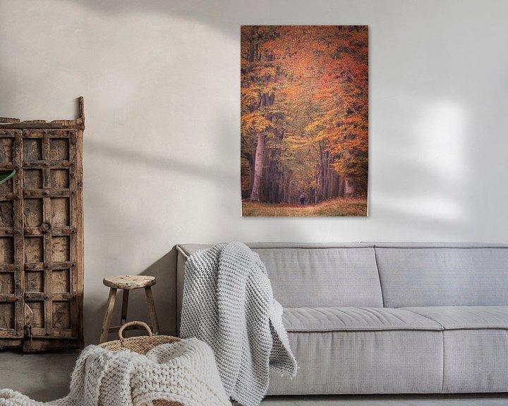 Sfeerimpressie: Herfstlaan in Oosterhesselen van Anneke Hooijer