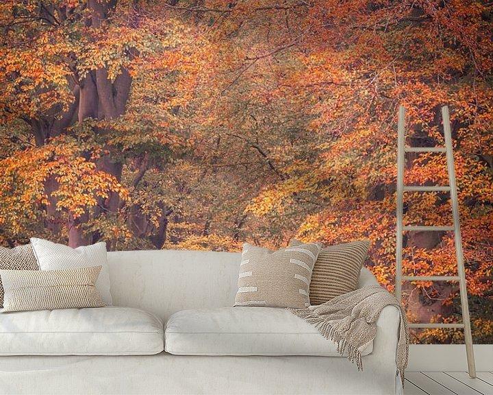 Sfeerimpressie behang: Herfstlaan in Oosterhesselen van Anneke Hooijer