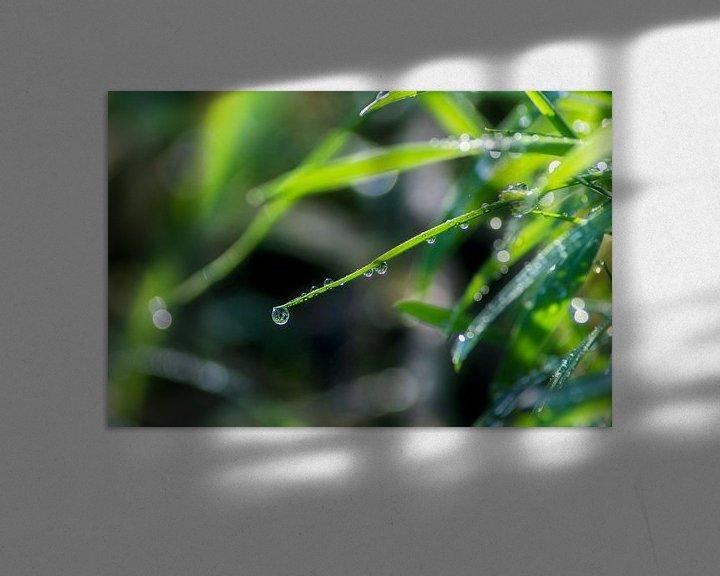 Sfeerimpressie: Gras en Ochtend dauw van Jeffrey Tukker