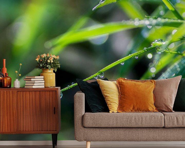 Sfeerimpressie behang: Gras en Ochtend dauw van Jeffrey Tukker