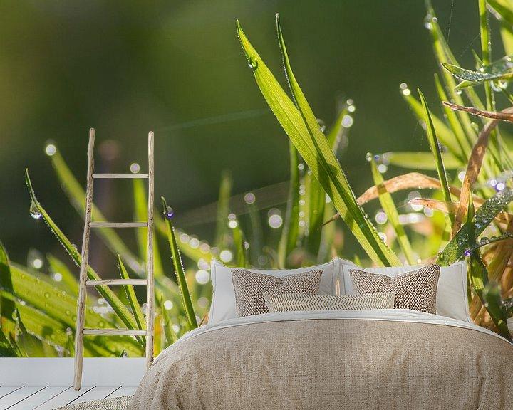 Sfeerimpressie behang: Gras in de ochtenddauw van Jeffrey Tukker