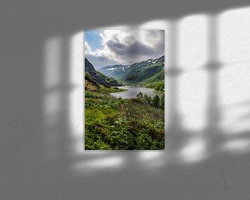 Rode Noorse huis langs de Aurlandselvi in Noorwegen von Ricardo Bouman