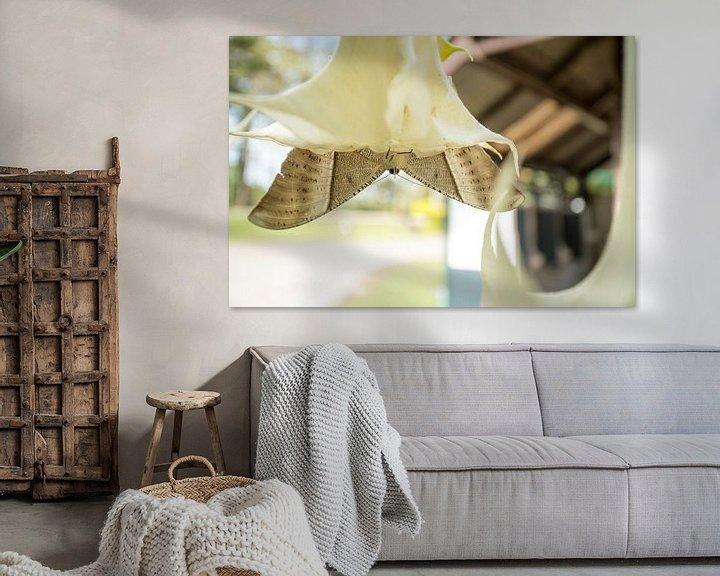 Sfeerimpressie: Een reuze zwaluwstaartvlinder van Marcel Derweduwen