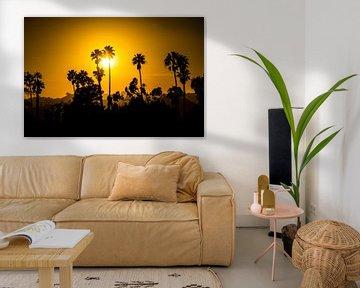 Beverly Hills Palmbomen van Michel van Rossum