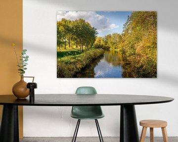 Bomen in herfstkleuren gereflecteerd in het wateroppervlak van Ruud Morijn