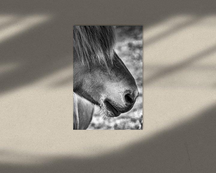 Sfeerimpressie: Cover the eye van Ruud Peters