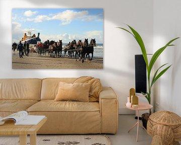 Paardenreddingsboot sur Rinnie Wijnstra