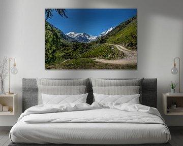 Bergpad met op de achtergrond besneeuwde bergtoppen in het Turtmanntal. van Ad Van Koppen