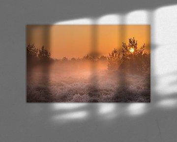 Het zonnetje met de mistbanken over het Aekingerzand van P Kuipers