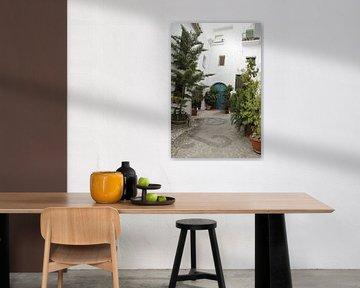 Ein spanischer Innenhof mit vielen Pflanzen von Cora Unk