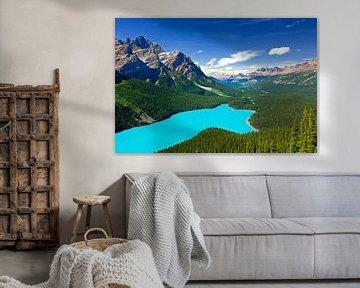 Peyto Lake in Banff N.P., Alberta, Kanada