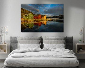Kleurrijke Noorse Huizen Reflecties van Harry Eggens