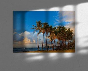 Sonnenaufgang Kapaa Beach Park, Kauai, Hawaii