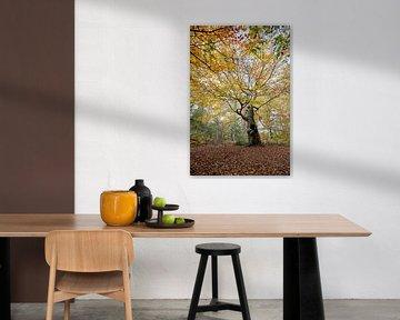 Levensboom (compositie 5) van Remke Spijkers