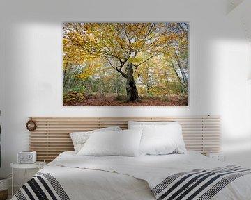 Levensboom (compositie 1) van Remke Spijkers
