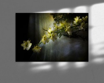 flowers on a table von Tejo Coen