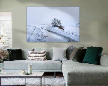 Winter op het Hogeland van Marnefoto .nl