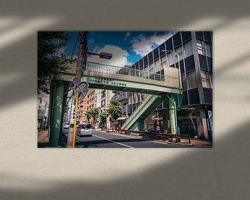 Japanse loopbrug van Sascha Gorter