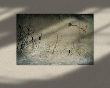 Abstrakte Vogelwelt von Heike Hultsch