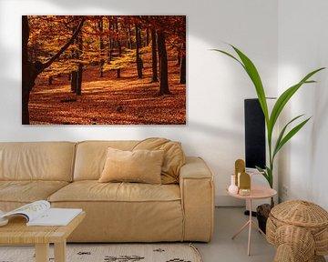Herfst bos van Mayra Pama-Luiten