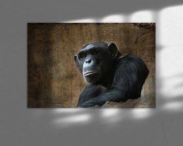 Affe von Heike Hultsch